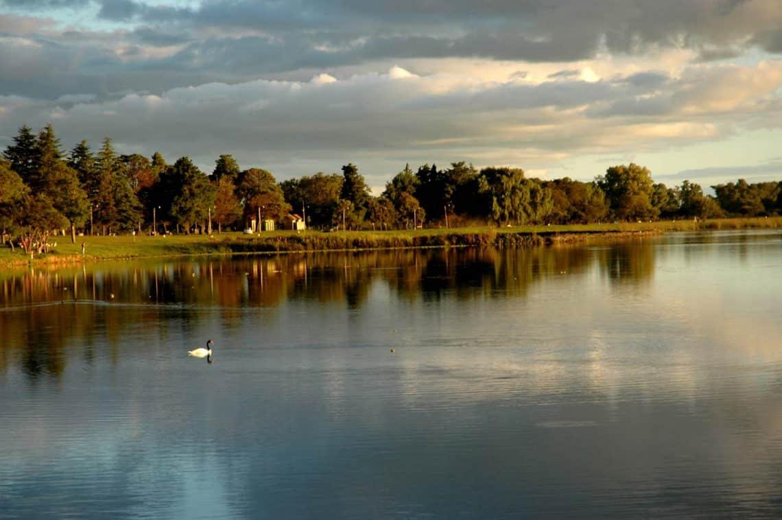 La Laguna de Las Flores