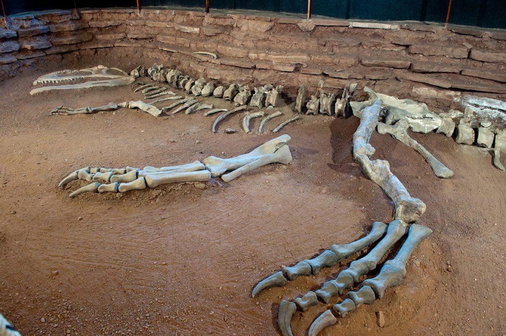 Villa El Chocón, tierra de dinosaurios