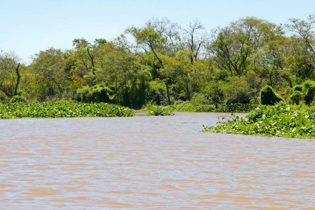 Pesca en Villa Río Bermejito