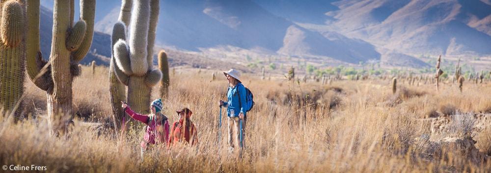 Parque Nacional Los Cardones, Salta @Celine Frers