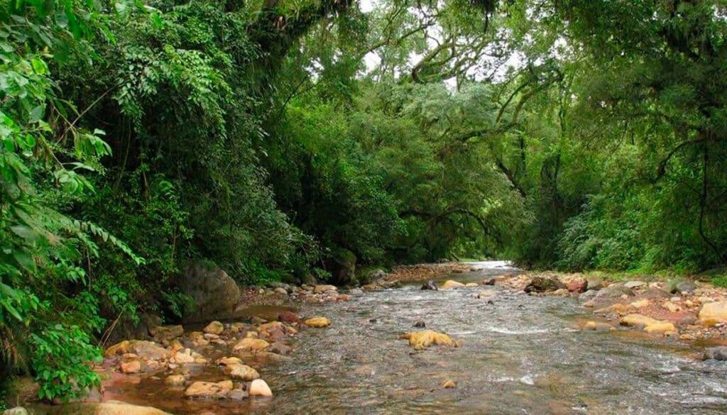 Parque Nacional Calilegua, Jujuy