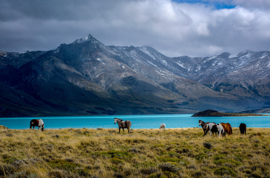 Parque Nacional Perito Moreno, Santa Cruz - foto Lonely Planet