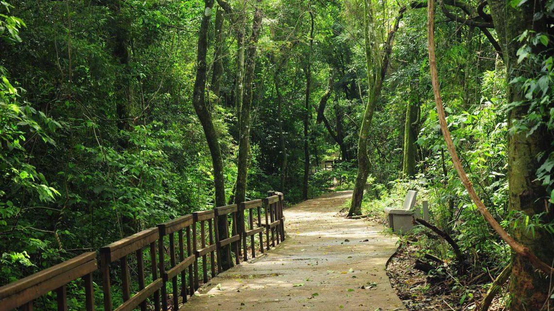 Parque temático de la Cruz, Misiones