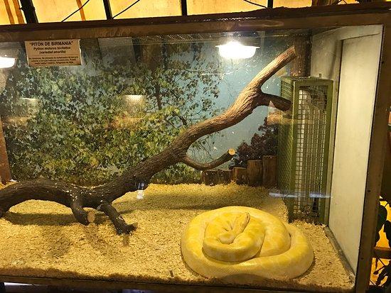 Serpentario Anaconda, Ciudad de Mendoza