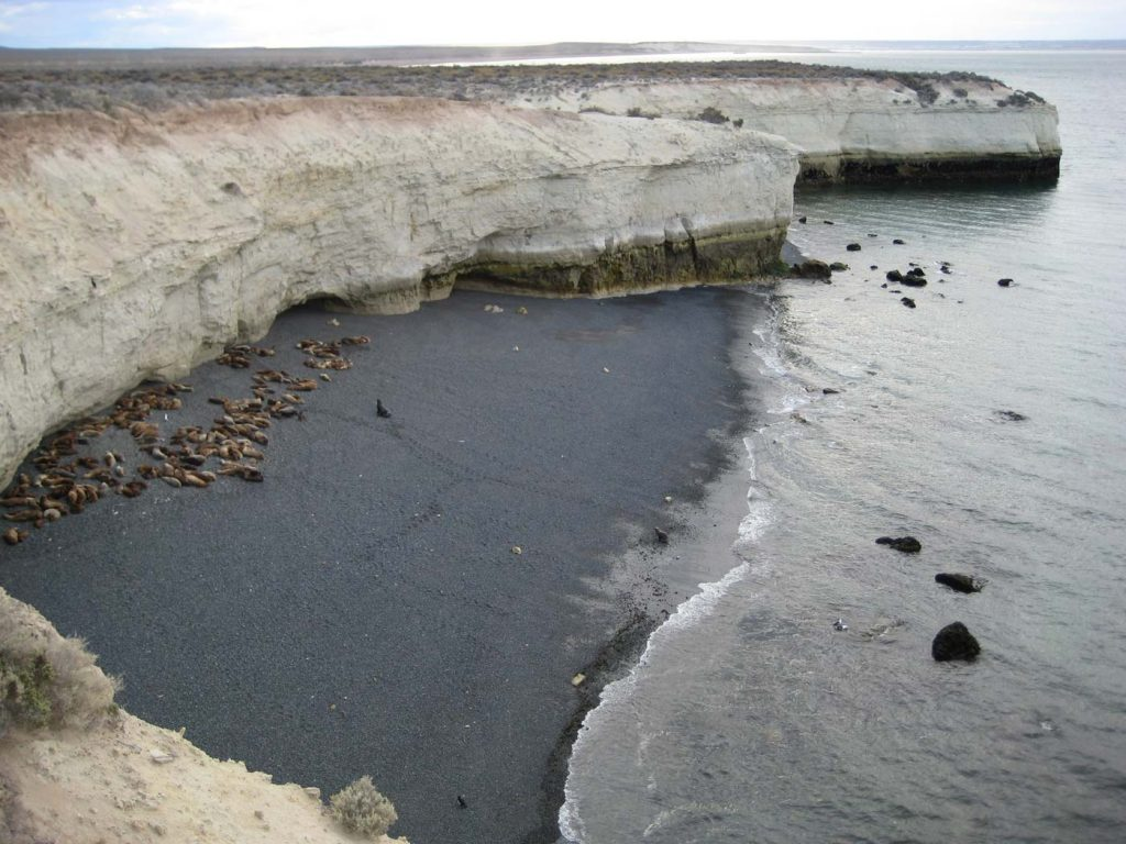 Punta Loma, Puerto Madryn, Chubut - Javier Coky