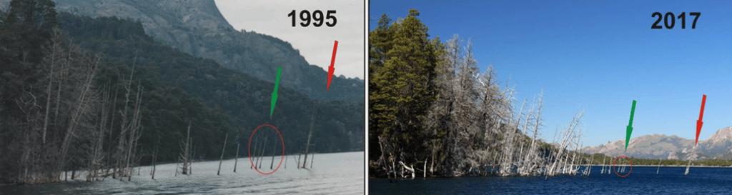 Movimientos del Bosque sumergido del Lago Traful, Neuquén