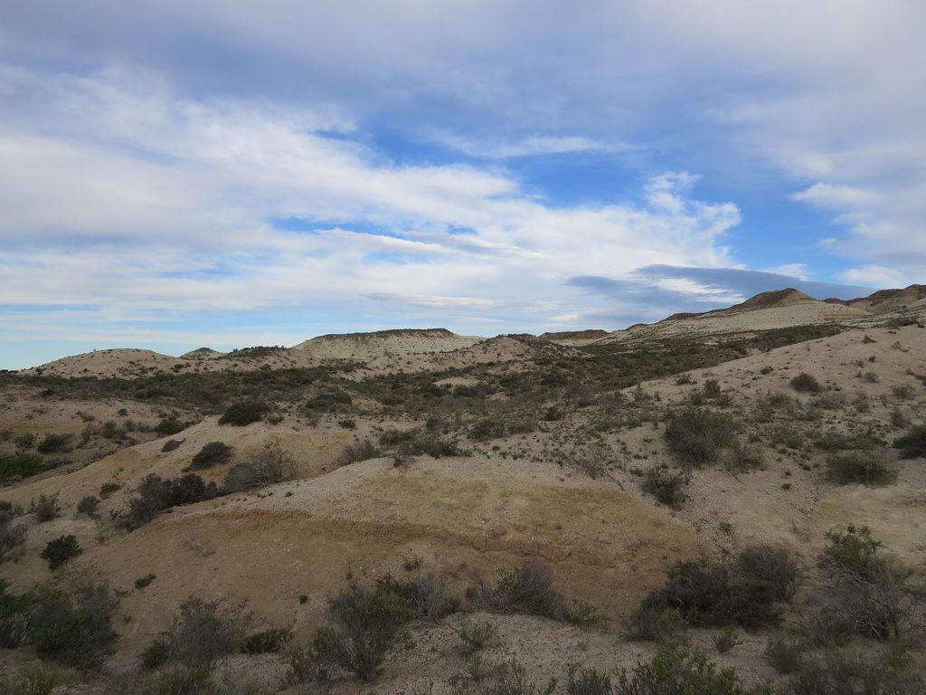 Estepa patagónica en el Geoparque Bryn Gwyn, Trelew, Chubut