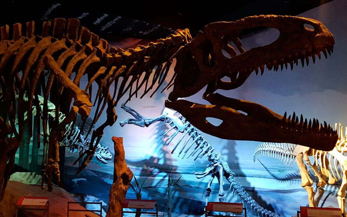 Museo Paleontológico Egidio Feruglio - MEF - Trelew - Chubut