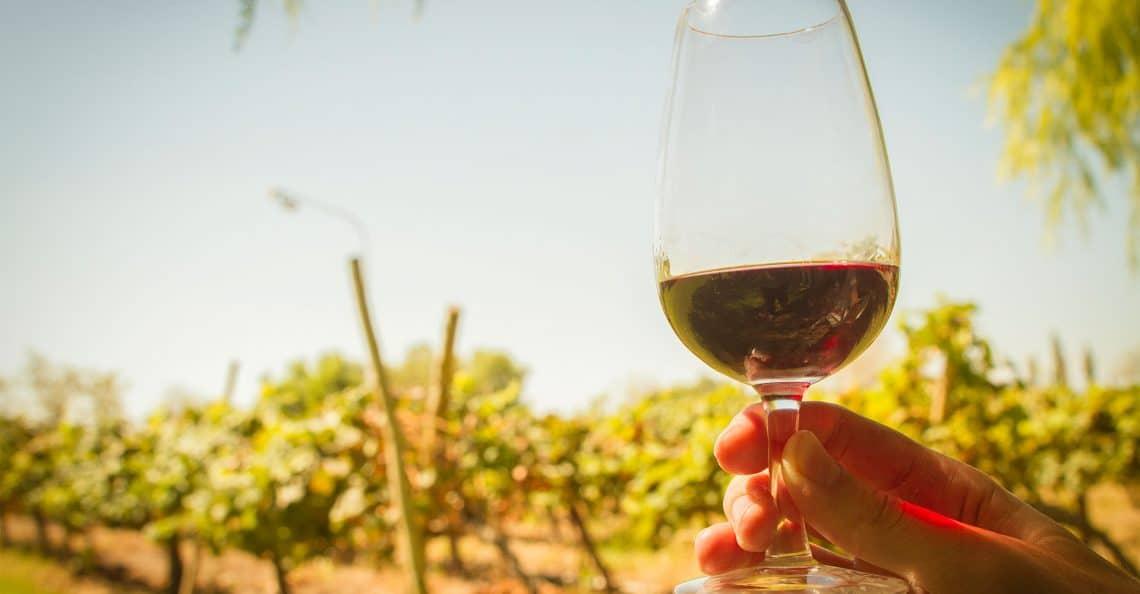 Ruta del Vino de San Juan - foto: www.rutadelvinosanjuan.com.ar