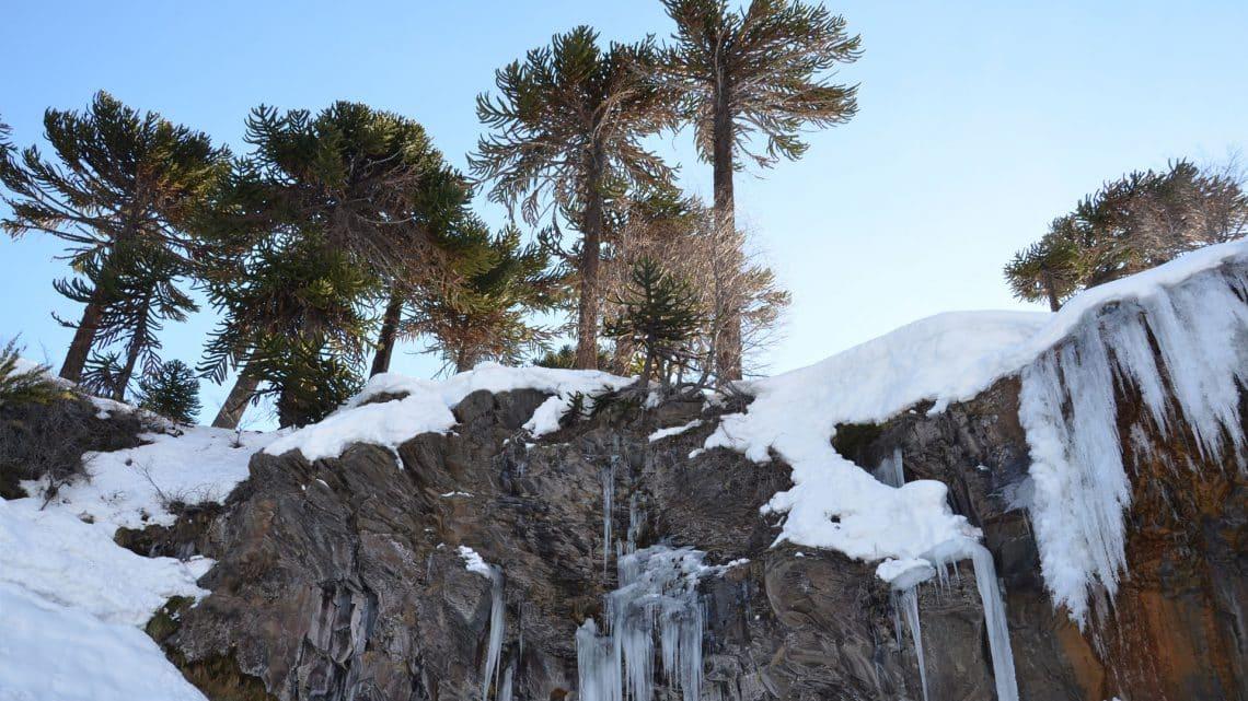 Cerro Caviahue Ski Resort, Neuquén - foto: caviahue.com