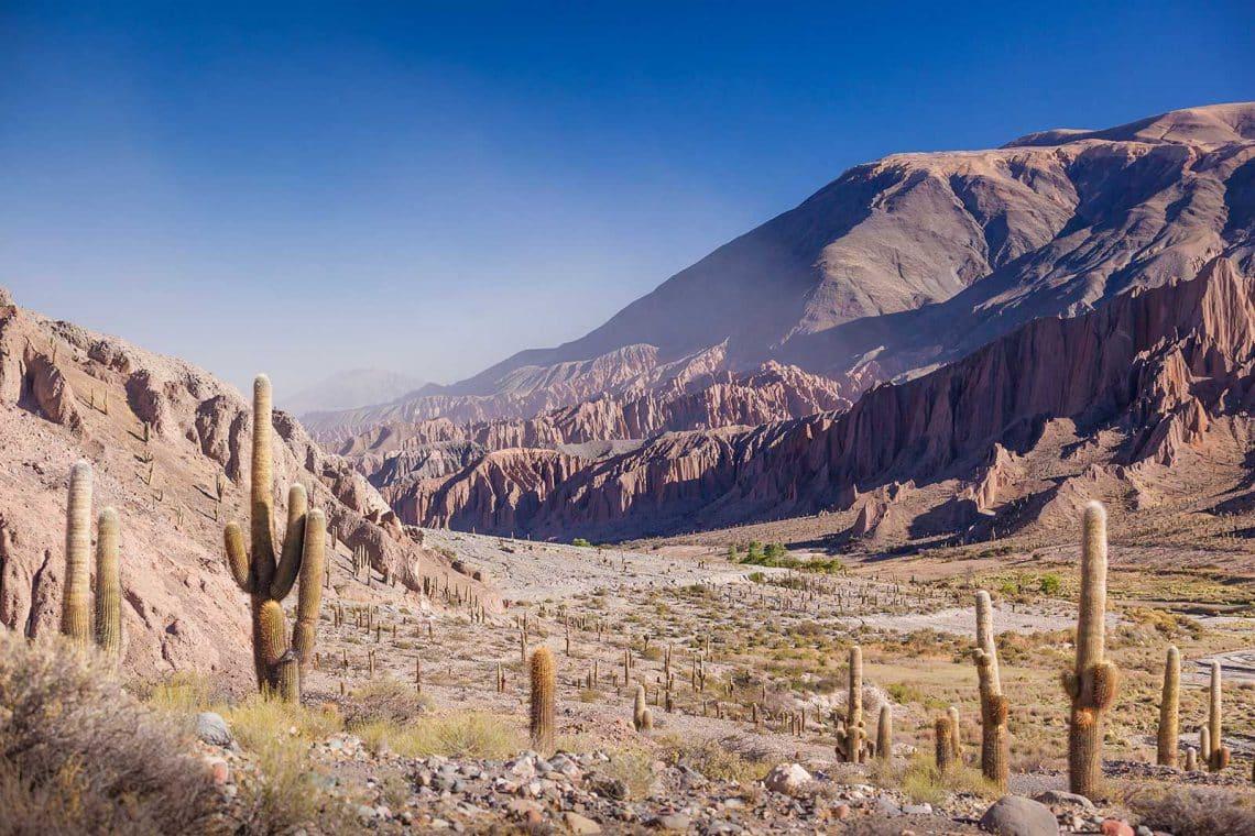 8 motivos para que viajes a Salta en invierno