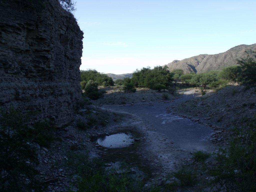 Parque Provincial Bajo de Véliz, San Luis - foto: naturalezayculturaargentina.blogspot.com.ar