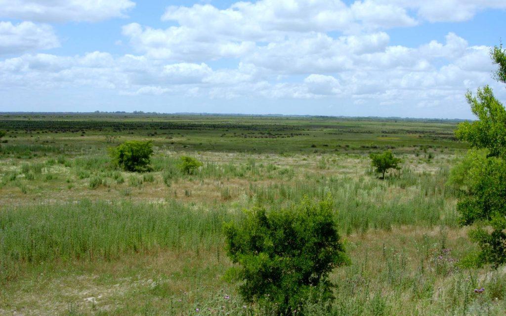 Reserva Natural Otamendi, Buenos Aires - parquesnacionales.gob.ar - ph M. Mazione