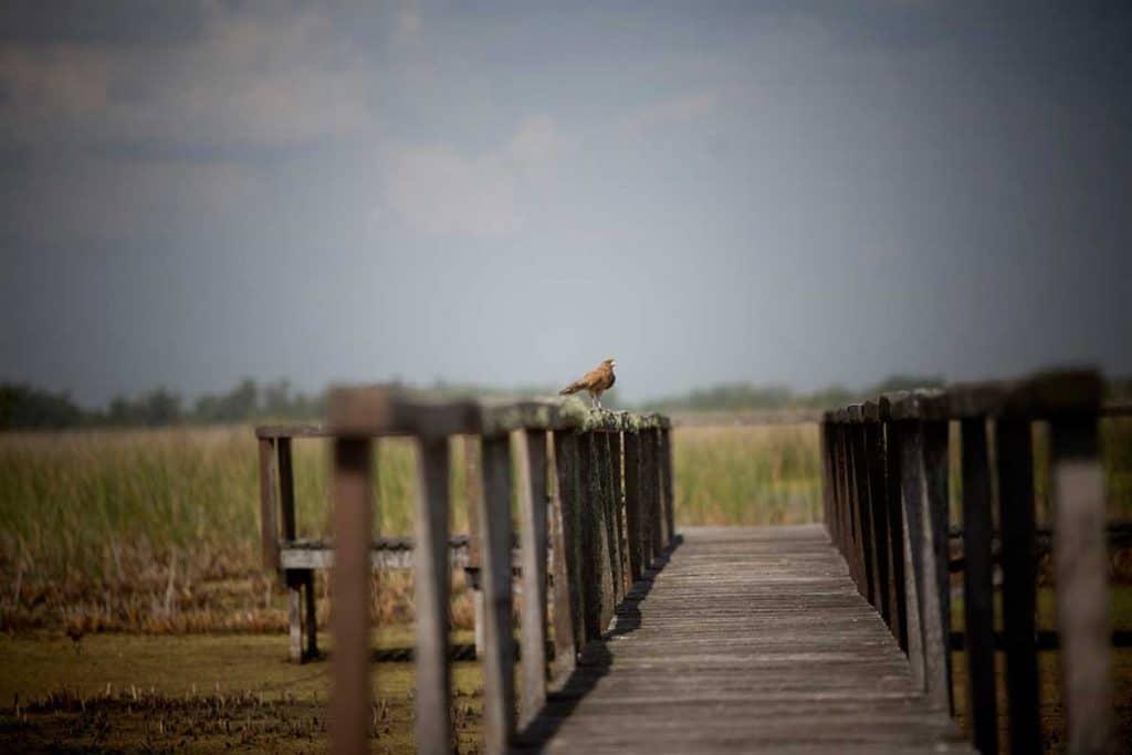 Nuevo parque nacional - Fuente LA-NACION -Credito - Santiago Filipuzzi
