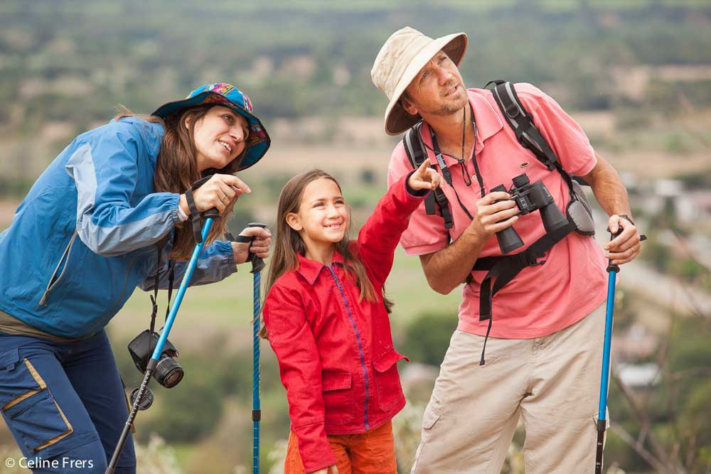 Observación de Aves en Salta - foto Celine Frers