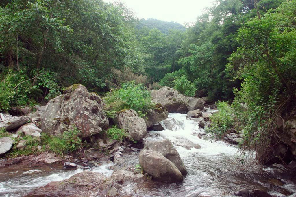 Reserva Provincial Los Sosa, Tucumán