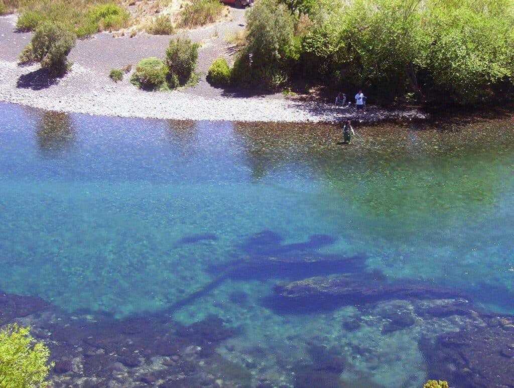 Area Natural Protegida Boca del Chimehuín, Paraíso de la Pesca de Truchas en Neuquén