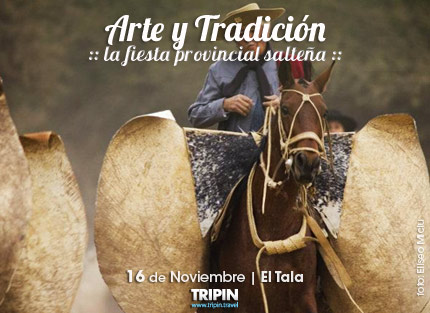 La fiesta del Arte y Tradición en Salta 2013