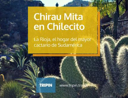 Chirau Mita, el mayor cactario de sudamérica en Chilecito