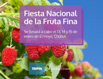 Fiesta Nacional de la Fruta Fina, El Hoyo