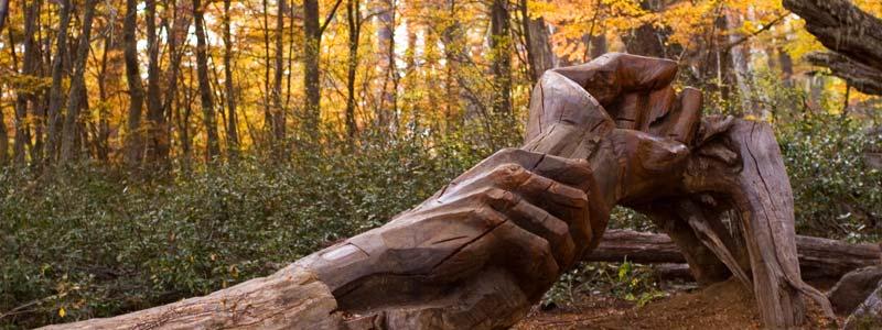 El bosque tallado en El Bolsón uno de los 4 principales lugares magicos 2014 de Argentina