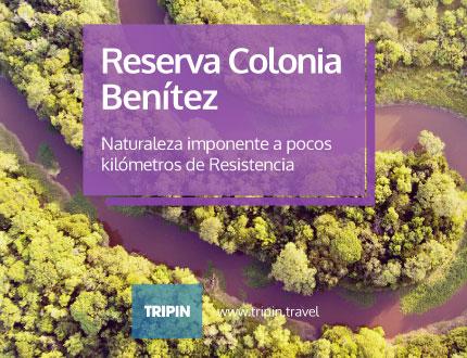 Colonia Benítez en Chaco, naturaleza imponente muy cerca de Resistencia