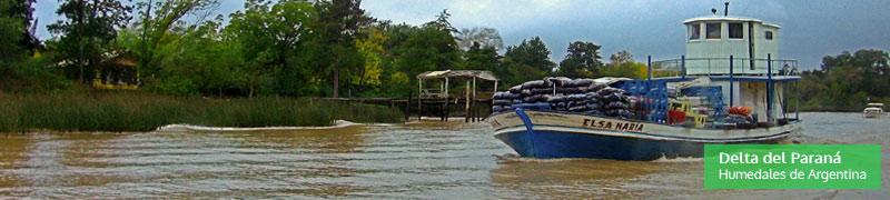 Delta del Paraná, humedales de Argentina
