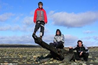 Libros de viaje en el Cabo San Pablo, en Tierra del Fuego