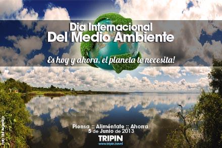 Dia del Medio Ambiente 2013