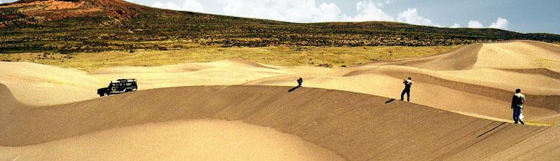 Las mágicas dunas del nihuil en mendoza!