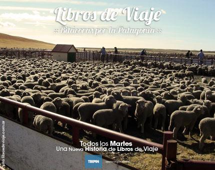 Libros de viaje y uno de los signos irrevocables de la Patagonia, la Esquila!