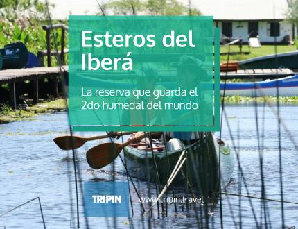 Esteros del ibera en Corrientes