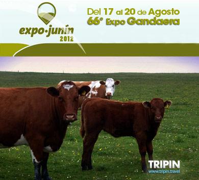 Expo Junin