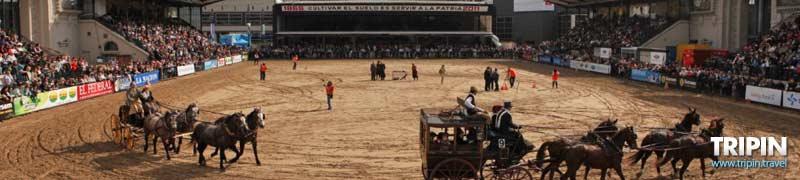 Expo ganadera en La Rural