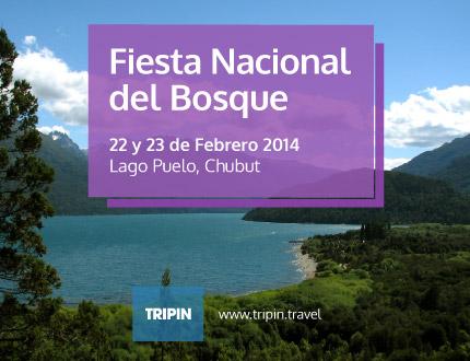 Fiesta Nacional del Bosque 2014 en Lago Puelo, con Alex Ubago y Fidel Nadal