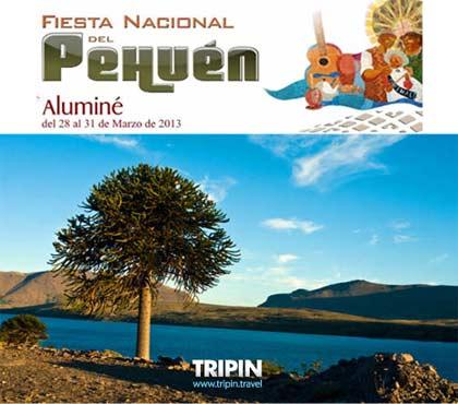 Fiesta del Pehuen 2013 en Aluminé