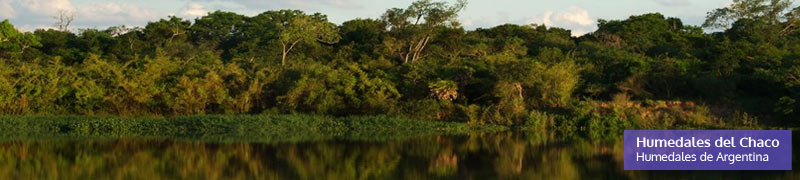 Humedales del Chaco, humedales de Argentina