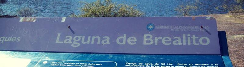 Laguna de brealito en Seclantás en Salta