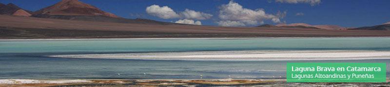 Laguna Brava en Catamarca, parte de las lagunas altoandinas, humedales de Argentina