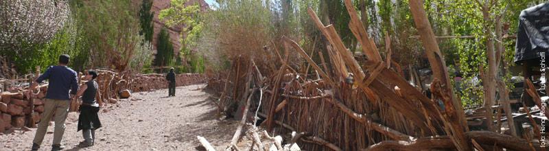 Las Quinuas en Catamarca, cerca de Antofalla