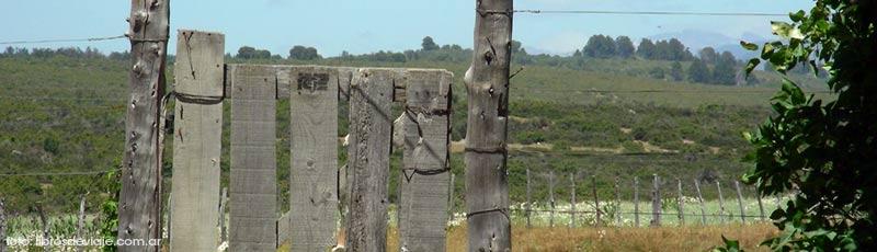 Libros de viaje y una nueva aventura en la Patagonia