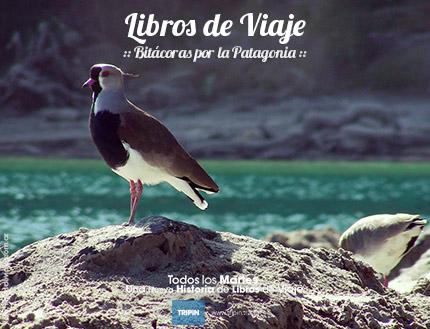 Libros de viaje con las cenizas del Volcán Puyehue en 2011