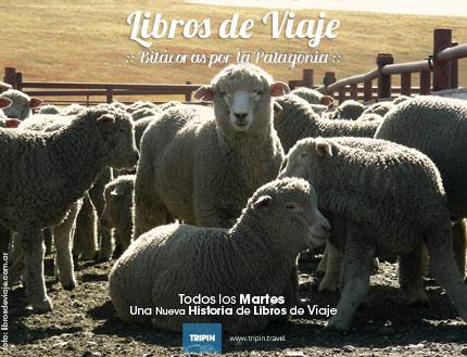 Libros de viaje en la esquila de las estancias patagonicas