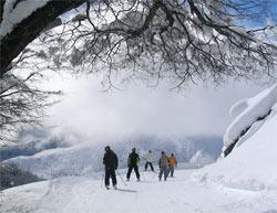Libros de viajes por Argentina Nieve 2013