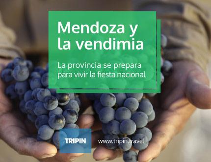 Mendoza ya palpita la fiesta más importante del vino, llega la fiesta nacional de la vendimia 2016