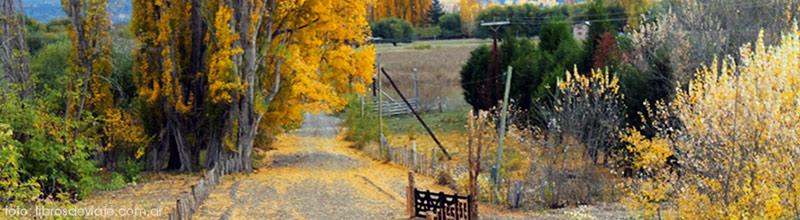 Los colores de otoño en el motorhome eco parking en el arroyo Nant & Fall en Chubut