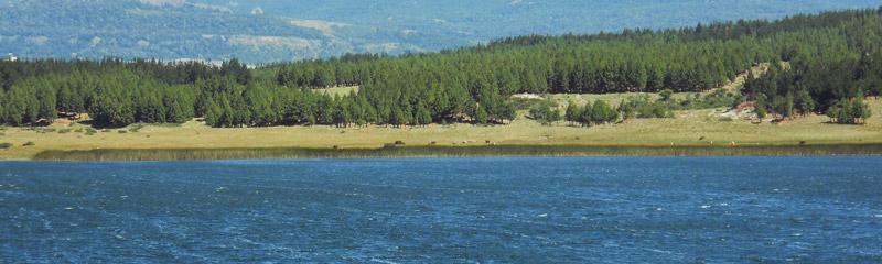Laguna La Zeta, en la Reserva Natural Urbana. Esquel
