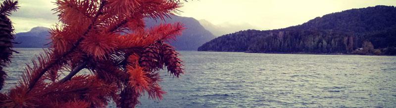 Los mágicos colores del otoño en la patagonia!