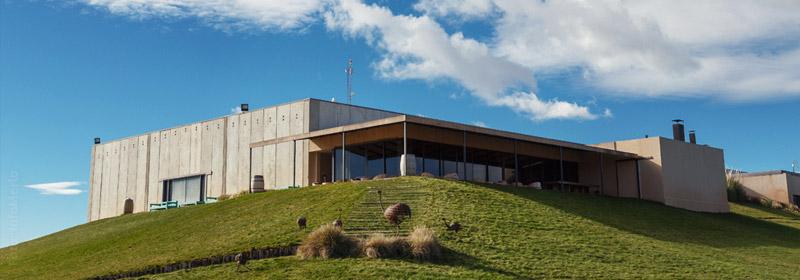 Bodega Malma, Neuquén