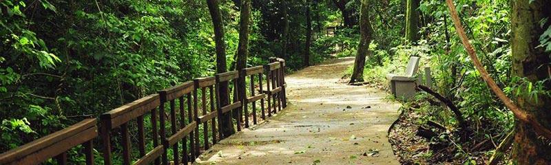 Parque de la Cruz, senderos y caminos